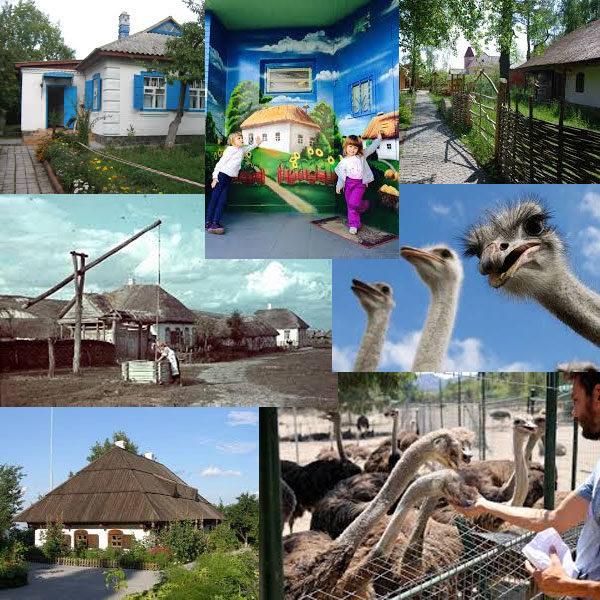 Тур в украинское село и страусинную ферму